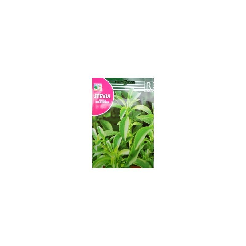 Semillas stevia rebaudiana