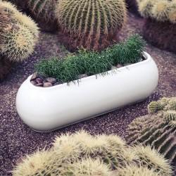 Kannelloni jardinera basic