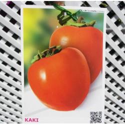 Kaki rojo brillante