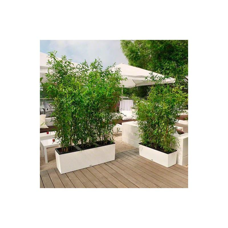 Jardinera trio cottage lechuza - Jardineras modernas ...