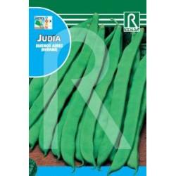 JUDIA BUENOS AIRES