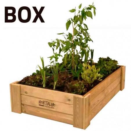 Huerto urbano box