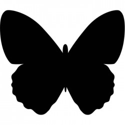 Pizarra pared mariposa