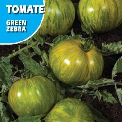 Semillas tomate green zebra