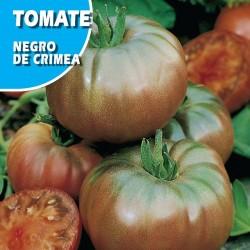 Semillas tomate negro de crimea