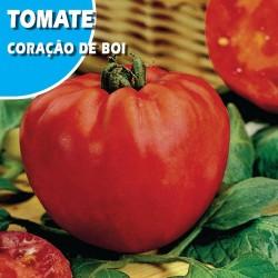 TOMATE CORAÇAO DE BOI