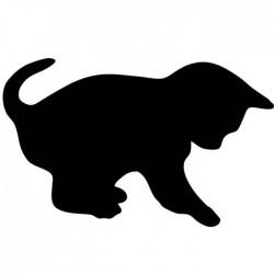 Pizarra pared gato