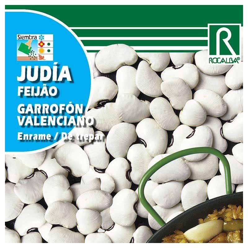 Alubia Garrofon Valenciano
