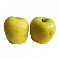 Manzano golden delicius