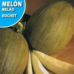 MELON ROCHET