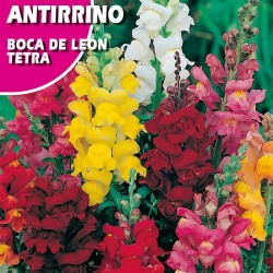 "ANTIRRINO BOCA DE LEON ""TETRA"""
