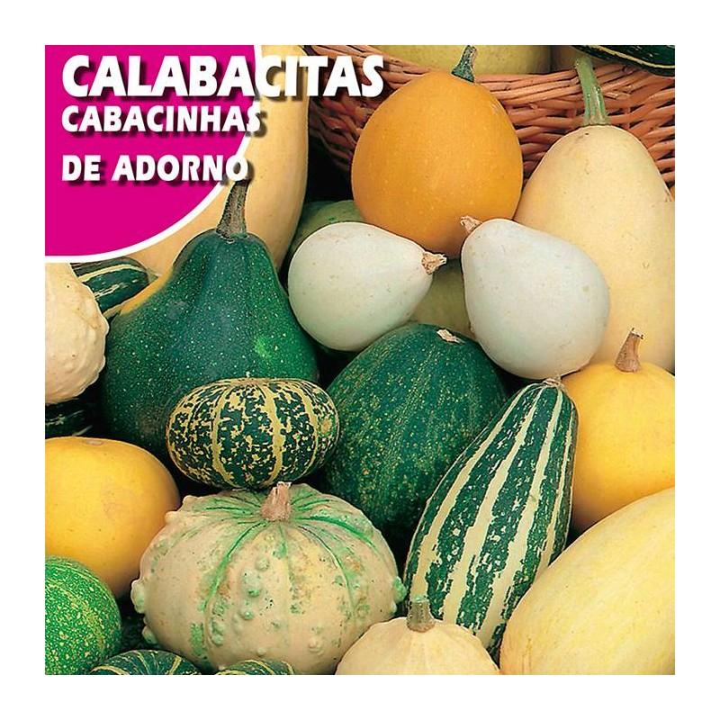 CALABACITAS DE ADORNO