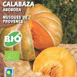 Calabaza Musquée de Provence
