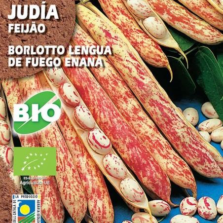 Judia Borlotto Lengua De Fuego Enna