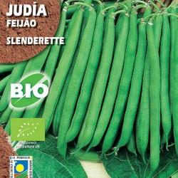 Judia Slenderette