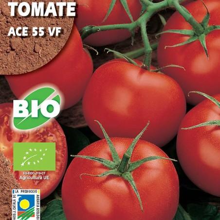 Semillas ecológicas tomate ace 55 vf