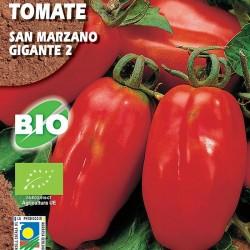 Tomate San Marzano Gigante 2