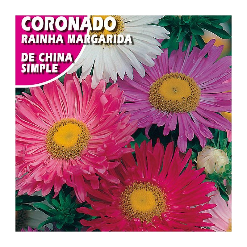 CORONADO DE CHINA SIMPLE VARIADO