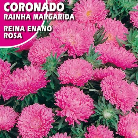 CORONADO REINA ENANO ROSA