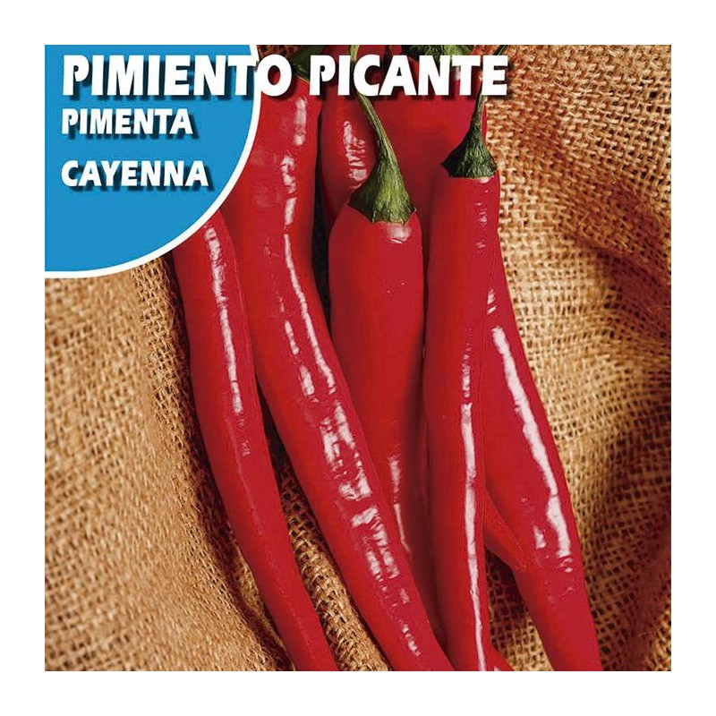 Semillas pimiento picante cayenna
