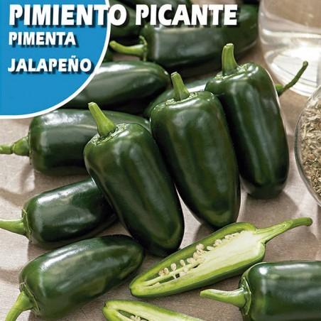 Semillas pimiento picante jalapeño