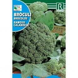 Semillas bróculi ramoso...
