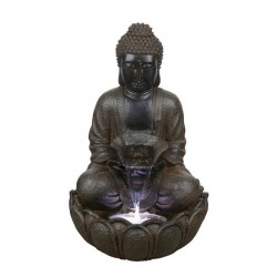 Fuente buddha p.