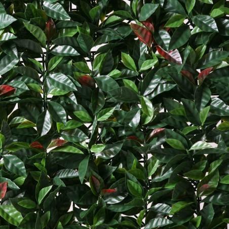 Seto Artificial Liptus