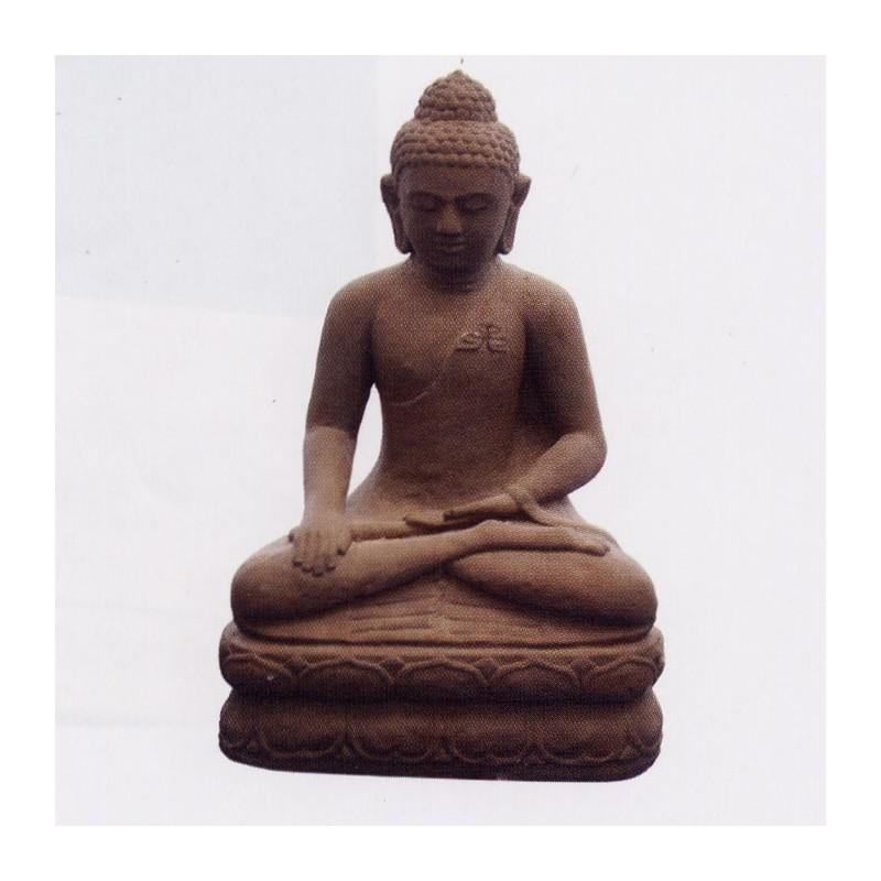 Buddha Vishnu