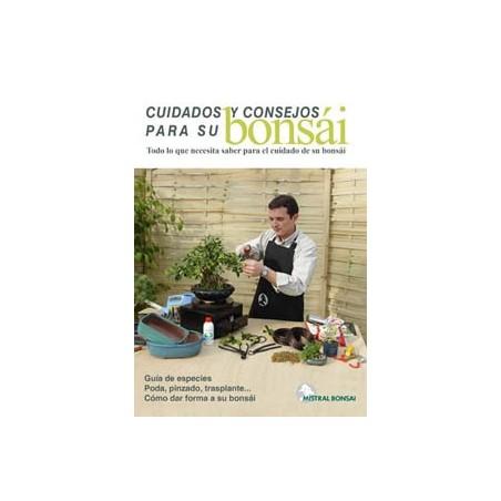 Guía cuidados y consejos del bonsái