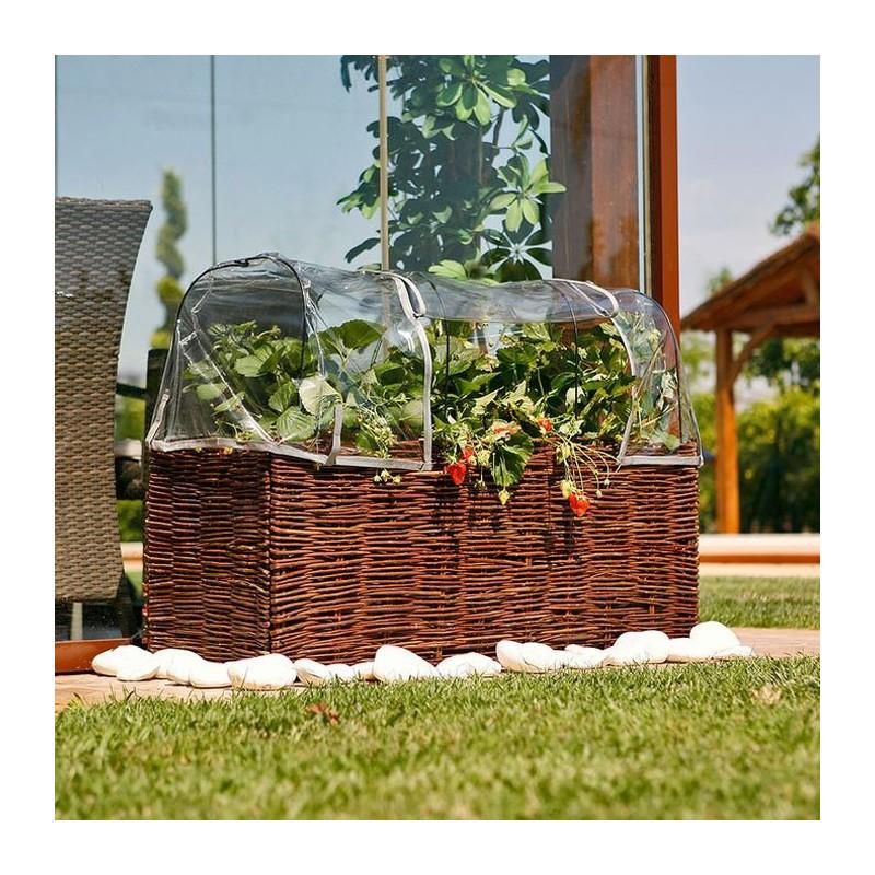 Kit Planter