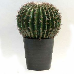 Cactus artificial ferocactus
