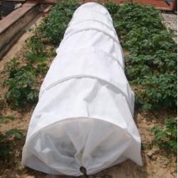 Túnel de cultivo antiheladas