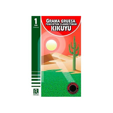 Pennisetum clandestinum pildorado kikuyu