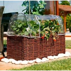 Funda invernadero kit planter
