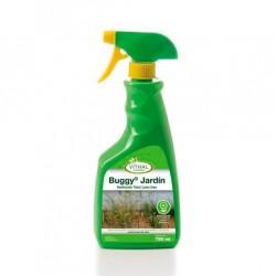 Buggy jardin