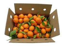 Caja de Mandarinas Kuka